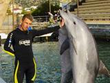 Анапский дельфинарий на Большом Утрише